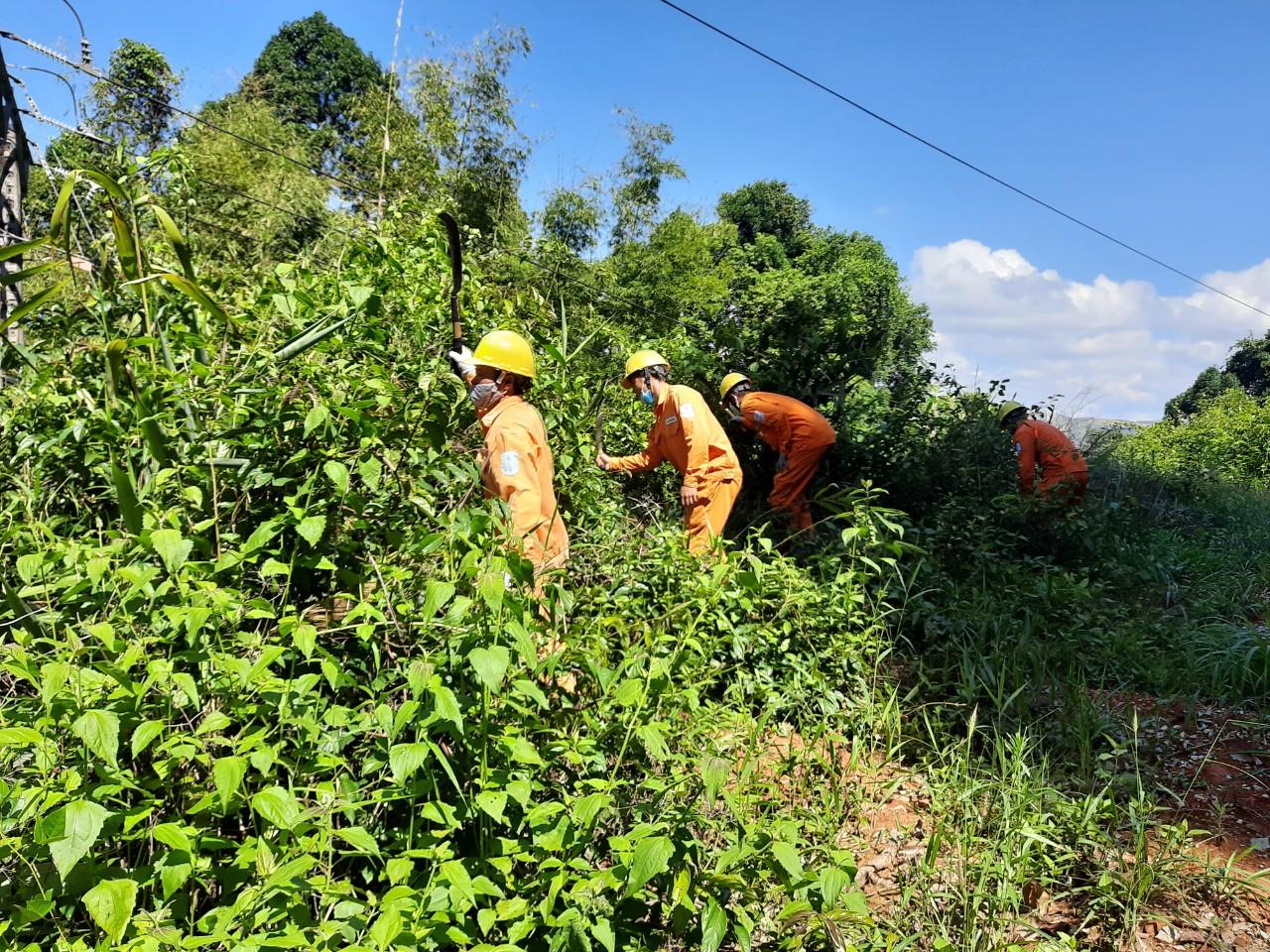 Kon Tum đảm bảo cấp điện cho gần 3.000 khách hàng xã biên giới Mo Rai trước mùa mưa bão